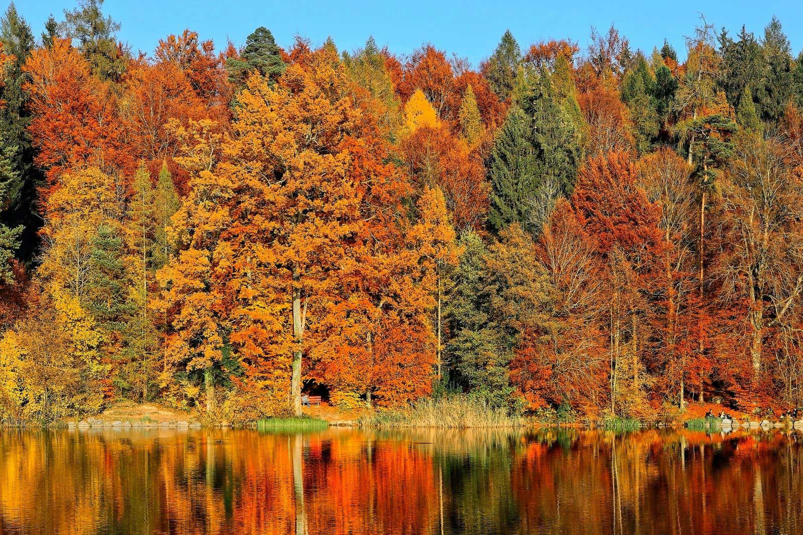 Finding Your New Groove This Autumn